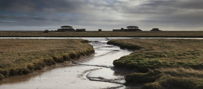 Orford ness perfect for bird watching
